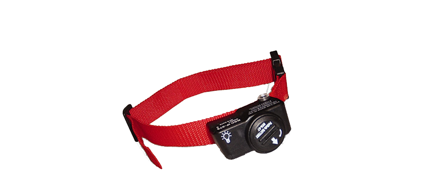 PetSafe® PIF-275 Wireless Collar